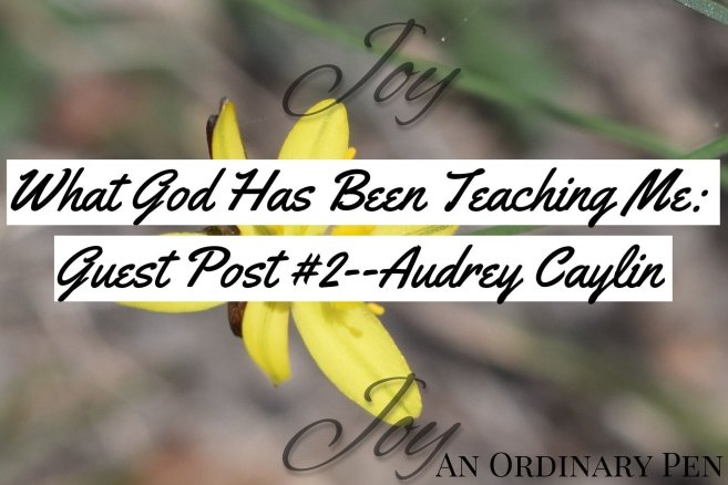 audrey blog header 2
