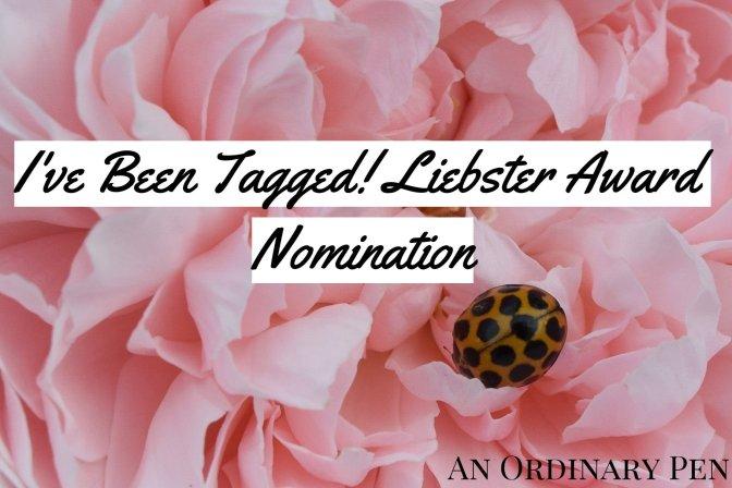 Liebster award 4