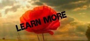 Learn More 1v