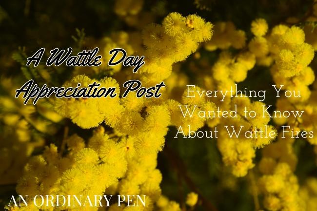 Wattle Day (1)