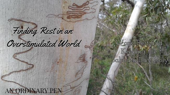 rest blog header